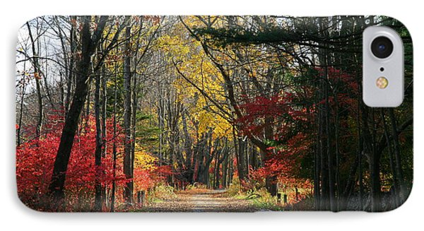 Autumn Paths    No.2 IPhone Case by Neal Eslinger