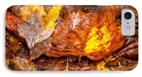 Autumn Pile IPhone Case by Melinda Ledsome