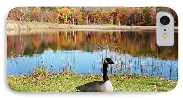 Autumn Pond Goose IPhone Case by Aimee L Maher Photography and Art Visit ALMGallerydotcom