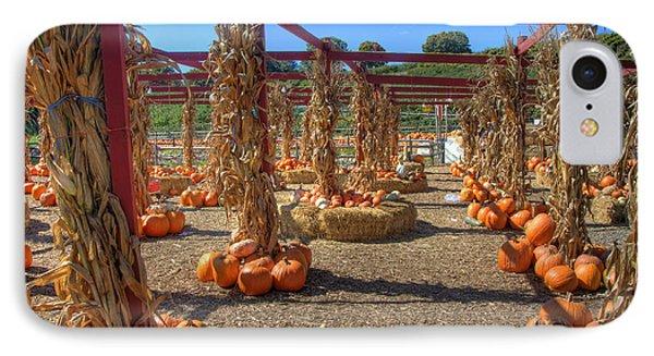 Autumn Pumpkin Patch IPhone Case