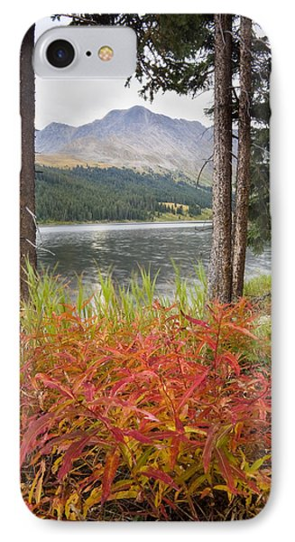 Autumn Quandry IPhone Case by Morris  McClung