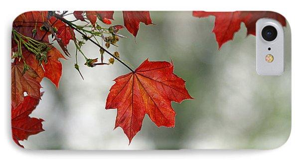 Autumn Red Phone Case by Karol Livote