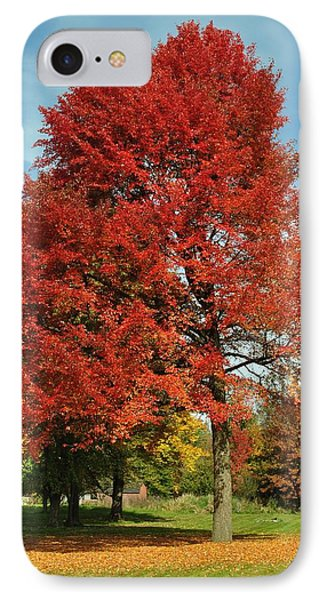 Autumn Red Phone Case by Frozen in Time Fine Art Photography