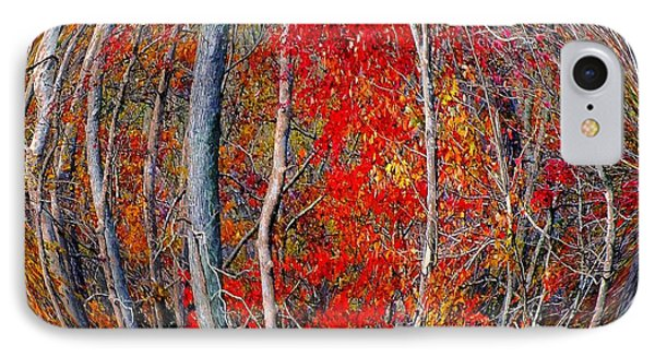 Autumn Reds Phone Case by Scott Cameron