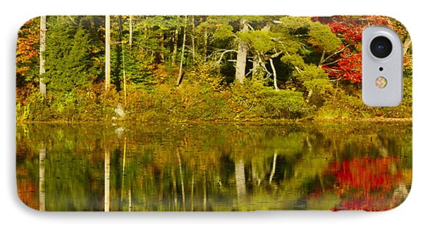IPhone Case featuring the photograph Autumn Reflections by Alice Mainville