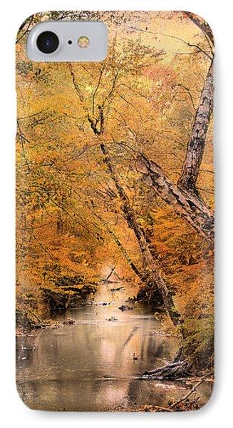 Autumn Riches 1 Phone Case by Jai Johnson