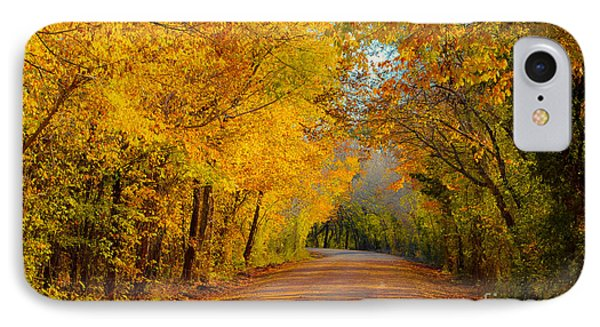 Autumn Road IPhone Case by John Roberts
