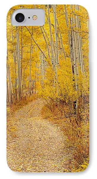 Autumn Road IPhone Case by Leland D Howard