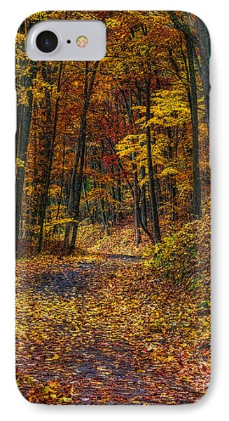 Autumn Roadway Reclamation IPhone Case
