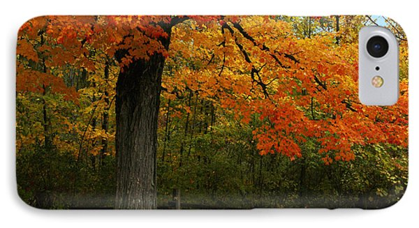 IPhone Case featuring the photograph Autumn Splendor by Bill Woodstock
