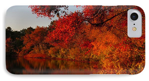 IPhone Case featuring the photograph Autumn Splendor  by Dianne Cowen
