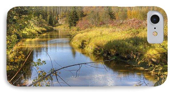 Autumn Splendor IPhone Case