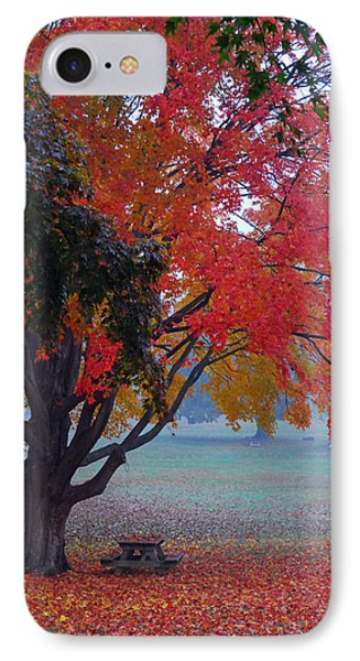 Autumn Splendor IPhone Case by Lisa Phillips