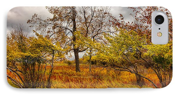Autumn Storm At Dolly Sods West Virginia I Phone Case by Dan Carmichael