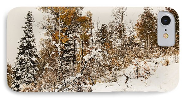 IPhone Case featuring the photograph Autumn Storm by Daniel Hebard