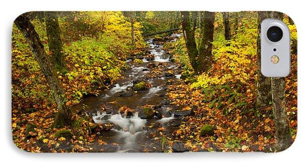 Autumn Stream IPhone Case by Mike  Dawson