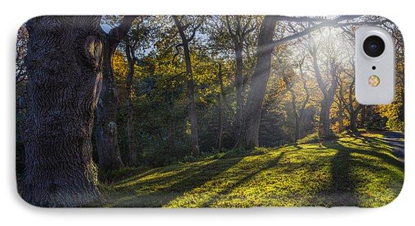Autumn Stroll V2 IPhone Case