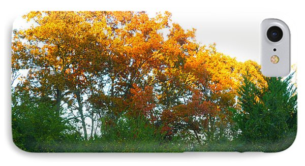 IPhone Case featuring the photograph Autumn Sunlight by Pete Trenholm