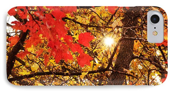 Autumn Sunrise Painterly IPhone Case by Andee Design