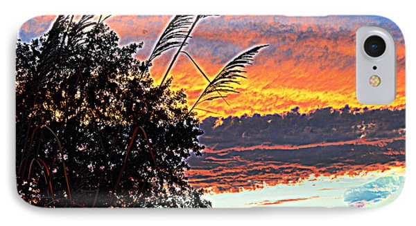 Autumn Sunset IPhone Case by Luther Fine Art