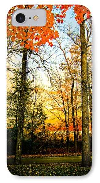 Autumn Sunset  IPhone Case by Sara Frank
