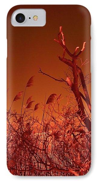 Autumn Surprise  Phone Case by Thomas  MacPherson Jr