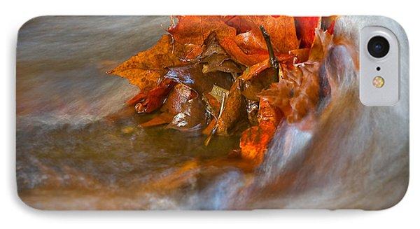 Autumn Swirls IPhone Case by Susan Candelario
