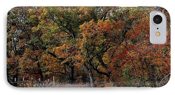 Autumn Trail 2 IPhone Case