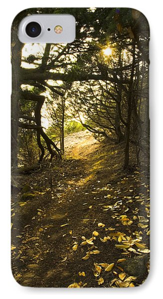 IPhone Case featuring the photograph Autumn Trail In Woods by Yulia Kazansky