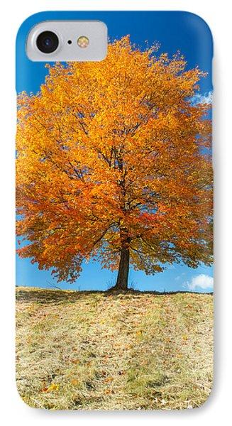 Autumn Tree - 1 IPhone Case