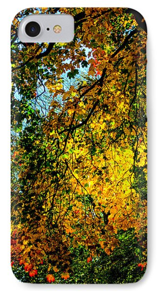Autumn Tree  IPhone Case by Tommytechno Sweden