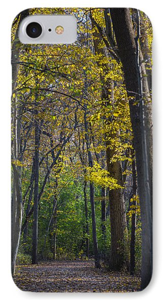 IPhone Case featuring the photograph Autumn Trees Alley by Sebastian Musial