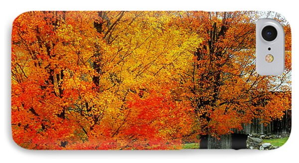 IPhone Case featuring the photograph Autumn Trees By Barn by Rodney Lee Williams