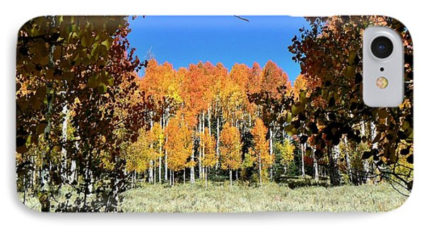 IPhone Case featuring the photograph Autumn Trees Dixie National Forest Utah by Deborah Moen