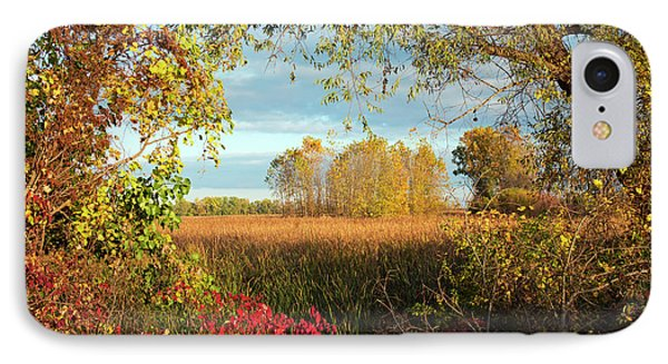 Autumn Trees IPhone Case by Jim West