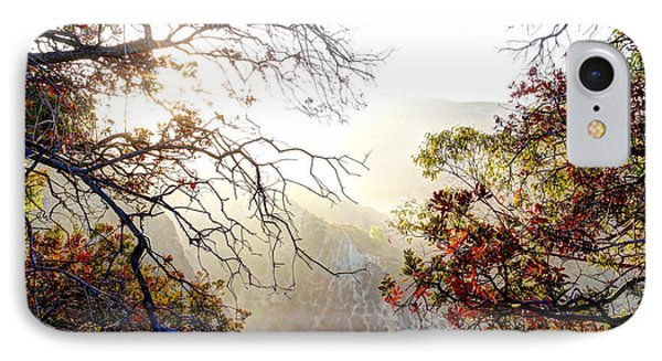 Autumn Trees IPhone Case by Kevin Ashley