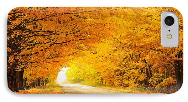 Autumn Tunnel Of Gold 8 IPhone Case by Terri Gostola