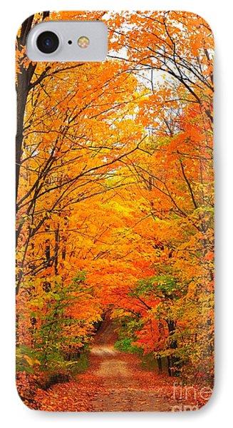 Autumn Tunnel Of Trees Phone Case by Terri Gostola