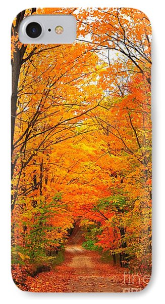 IPhone Case featuring the photograph Autumn Tunnel Of Trees by Terri Gostola