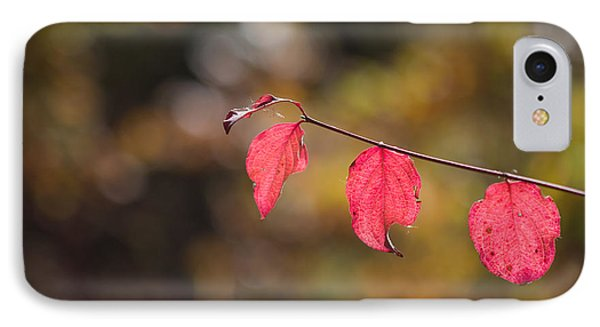 IPhone Case featuring the photograph Autumn Twig With Red Leaves by Jivko Nakev