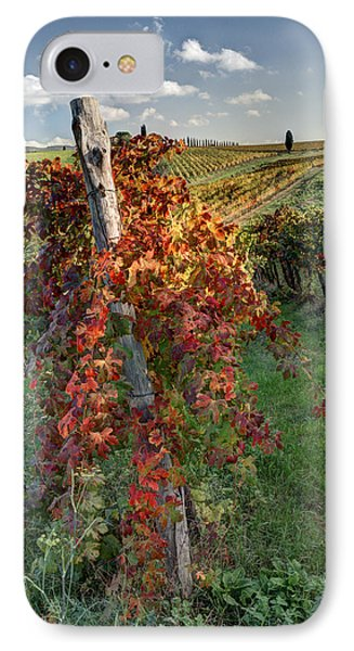 Autumn Vines IPhone Case by Eggers Photography