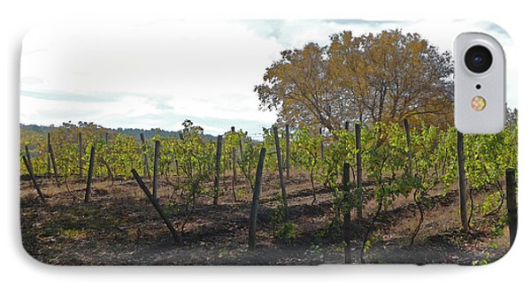 IPhone Case featuring the photograph Autumn Vineyard by Margie Avellino