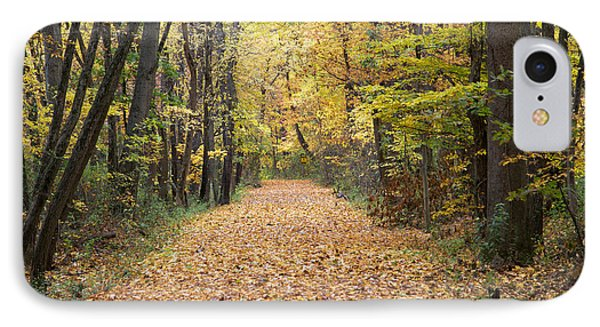 Autumn Walk IPhone Case by John Crothers