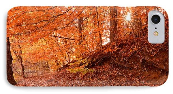 Autumn Walk IPhone Case by Lourry Legarde