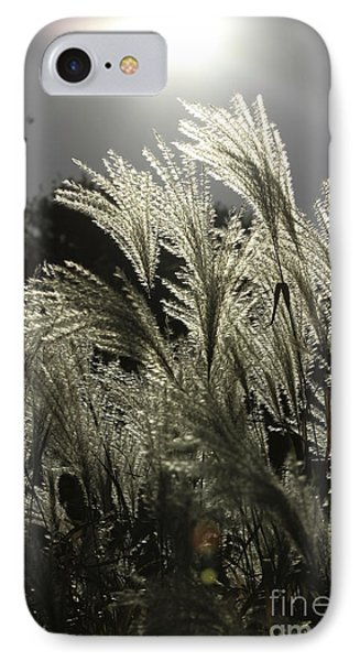 IPhone Case featuring the photograph Autumn Whispers by Kate Purdy