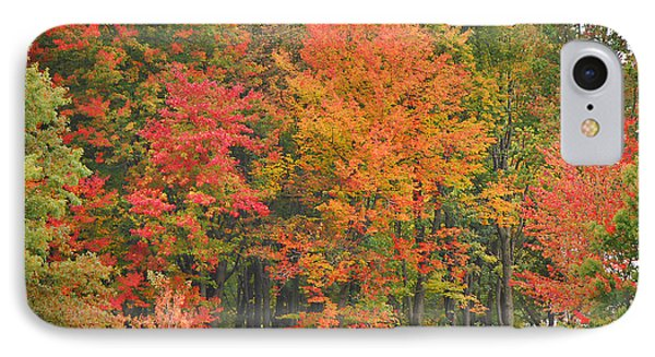 Autumn Woods Phone Case by Mary Carol Story