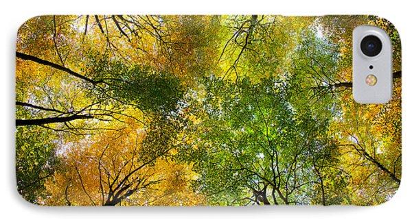 Autumnal Display IPhone Case