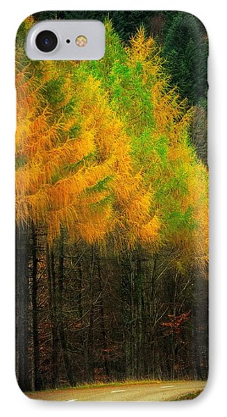 Autumnal Road IPhone Case