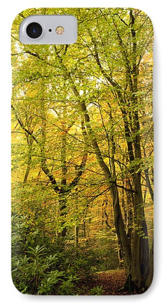 Autumnal Woodland IIi IPhone Case by Natalie Kinnear