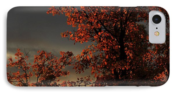 Autumn's First Light IPhone Case